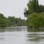 F11- Comarca Río Colorado - La Adela - 005