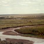 Río Colorado aguas abajo de 25 de Mayo y Catriel