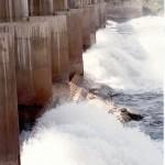 Río Colorado Dique Salto Andersen, aguas abajo, compuertas