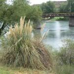 Salto Andersen, aguas arriba Río Colorado