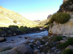 Arroyo curamilio